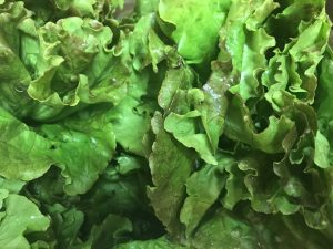 Order Fresh Greens from Groceries Now!